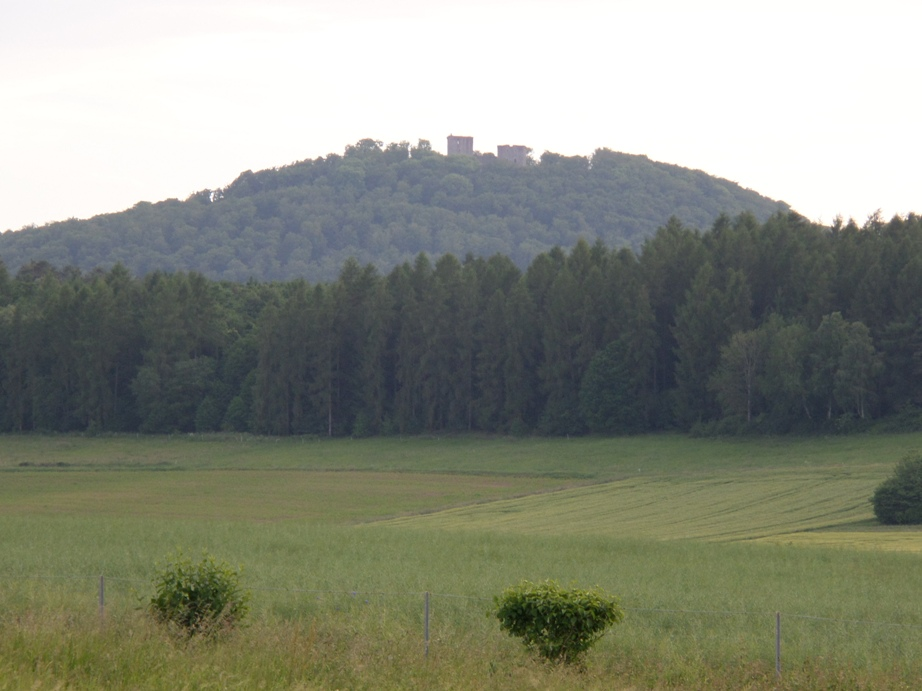 Blick zur Weidelsburg